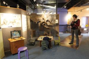 Explorium-Lexington-Indoor-1
